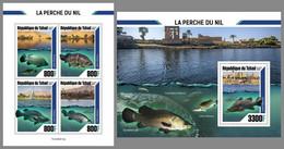 CHAD 2020 MNH Nile Perch Nilbarsch Perche Du Nil M/S+S/S - OFFICIAL ISSUE - DHQ2106 - Poissons
