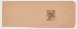 Algerie . Entier Bande De Journal , Neuve . - Lettres & Documents