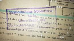 Carte Immatriculation Aux Assurance Sociale Agricole - Exploitation Forestière Zone Française D'occupation En Allemagne - Historical Documents