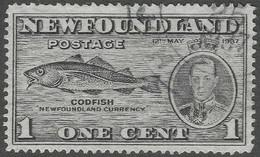 Newfoundland. 1937 Additional Coronation Issue. P14. 1c Used. SG 257 - 1908-1947