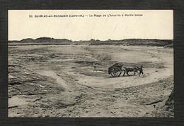 44 - QUIMIAC-en-MESQUER - La Plage De L'Anséria à Marée Basse - Other Municipalities