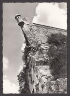 063971/ BESANCON, La Proue Et La Citadelle - Besancon