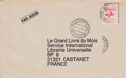 BRESIL SEUL SUR LETTRE POUR LA FRANCE 1991 - Cartas