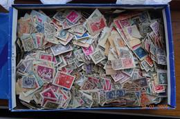 RAF 34 - Milliers De Timbres Belge Sur Fragment - Lots & Kiloware (mixtures) - Min. 1000 Stamps