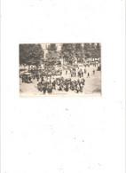 LILLE  MARCHE AUX CHEVAUX EN 1904. EDITION GL N° 115 - Lille