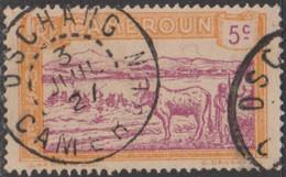 Cameroun Mandat Français - Dschang Sur N° 109 (YT) N° 72 (AM). Oblitération De 1927. - Oblitérés