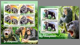 GUINEA REP. 2020 MNH Monkeys Chimapanzee Affen Schimpansen Singes Chimpanze M/S+S/S - OFFICIAL ISSUE - DHQ2108 - Mono