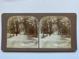 Stereofoto Van Bergen, Noord-Holland  C. 1910 - Altri