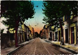 13 - Marseille - La Rose - Avenue Principale (1960) - Nordbezirke, Le Merlan, Saint-Antoine