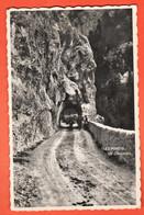 MKD-36  ANNIVIERS  Les Pontis Chandolin, Tunnel, ANIME. Circulé Avec Cachet St.-Luc En 1949 Perrochet - VS Valais