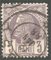 766 Roumanie 1885 3b Violet (ROU-137) - Usati