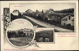 CPA Wien Penzing Hadersdorf Weidlingau, Mühlendorfer's Winzerhaus Am Mühlberg, Weber Villen - Other