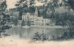 CPA - 21044 -Suisse - Weggis  - Schloss Hotel Herrenstein -Envoi Gratuit - LU Lucerne