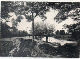 Etang-sur-Arroux (71) : Les Bords De L'Arroux à Chazeux En 1950 (Edition RARE) GF. - Autres Communes