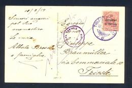 ITALY - Postcard Franked With Provisional Stamps For Dalmatia, Sent Loco Trieste 18.03. 1919. Censorship Cancel 'CENSURA - Dalmatia