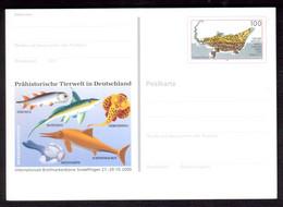 XZ231    Germany, 2000 Stationery Postcard Prehistoric Animals, Dinosaur, Fossil - Animaux Préhistoriques, Dinosaure - Prehistorics