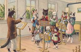 Katzen In Der Musikstunde - Verl. Künzli - 1956      (P-302-00924) - Gatos