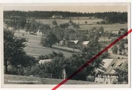Schlesien Isergebirge - Erholungsheim Kesselschloß - Ca. 1930 - Flinsberg Friedeberg Giehren Rabishau Kotlina Regensberg - Schlesien