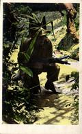 Guerre D'Indochine - Cochinchine - Opération Commando Français - Vietnam