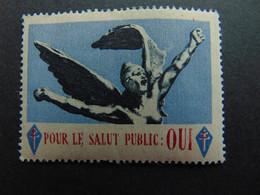 Magnifique Vignette De Soutien Au Général De Gaulle Pour Le Salut Public - Ohne Zuordnung