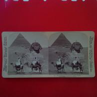 PHOTO STEREO EGYPT THE SPINX AND PYRAMID OF CHEFREN - Stereoscopio
