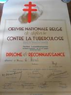 Diplôme Tuberculose Luxembourg 1934 - Diploma's En Schoolrapporten