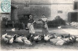 ESSONNE, Région De La BEAUCE. Repas Des Poules. Edition ROULLIER  Angerville, CPA Postée à Angerville En 1909. TB état. - Angerville