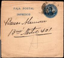 Argentina - Circa 1900 - Bande Postale - San Martin En Medallon - 1 Ctv - A1RR2 - Cartas