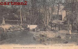 ENVIRONS DE MOULINS-ENGILBERT VILLACOT VACHES ABREUVOIR 58 NIEVRE - Moulin Engilbert