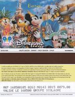 FRANCE - Disneyland Paris Passport(reverse Narboni, Brown Strip), 03/00, Used - Pasaportes Disney