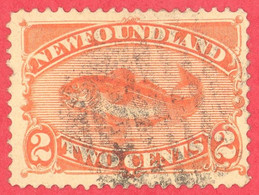 Canada Newfoundland # 48 - 2 Cents - O F - Codfish / Morue - 1865-1902