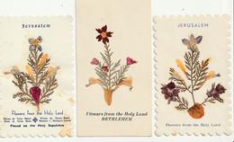 Lot De 3 IMAGES RELIGIEUSES -  Fleurs Séchées - Imágenes Religiosas