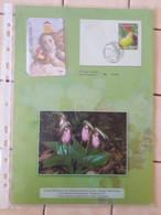 Cartes Téléphoniques Dans Son Encart CEF56 - Unclassified