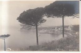 1031 - Celle Ligure - Otros