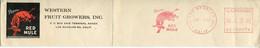 62376 U.s.a. Red Meter Freistempel Ema, CUT ! 1951 Los Angeles Calif  Red Mule, , Rodeo  Mule, Maultiere - Marcophilie