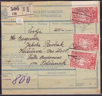 Slovenia, Chainbreakers, 1919, Celje, Parcel Card - Briefe U. Dokumente