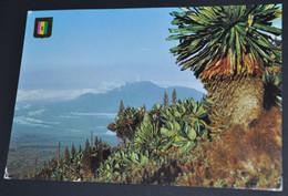 Paysage De Volcans - Rwanda