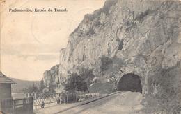 Profondeville  Entrée Du Tunnel   Treinspoor Voie     M 7300 - Profondeville