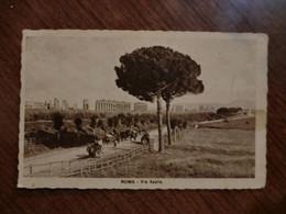 Cartolina Postale  Viaggiata Nel 1929 Con Bollo Del Vaticano - Viste Panoramiche, Panorama