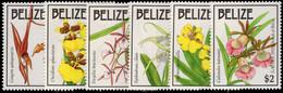 Belize 1992 Easter. Orchids Unmounted Mint. - Belize (1973-...)