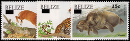 Belize 2004-05 Mammals Questa Provisional Set Unmounted Mint. - Belize (1973-...)