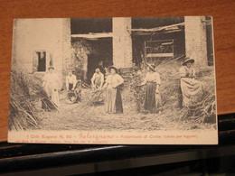 GALZIGNANO TERME - GALSIGNANO - COLLI  BN NV PICC   Fabbricanti Di Corbe (ceste Per Legumi) VG DA VEDERE - Padova (Padua)