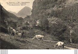 D65  CAUTERETS  Route De Pierrefitte- Cauterets  ..... - Cauterets