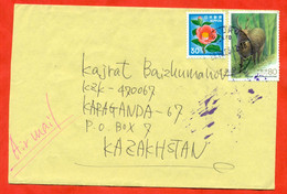 Japan 1995. The Envelope Of Past Mail. Airmail. - Cartas