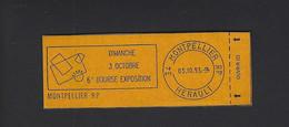 CARNET PRIVE MARIANNE BRIAT 10 ET 20 EXPOSITION PHILATELIQUE A MONTPELLIER 1993 CARNET FERME - Autres