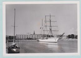 """Mercator, Originele Foto Van """" Foto Roland , Christinastr..32, Oostende""""  In De Haven Van Oostende - Oostende"""