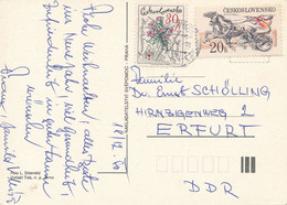 Tschechoslowakei Mi. 2496 Y Blume Gletschernelke + Mi. 2470 Pferde Trabrennen TGST 1980 - Postkarte Nach DDR - Cartas