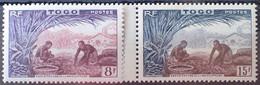 R2452/84 - 1954 - COLONIES FR. - TOGO - N°256 à 257 NEUFS**(1t)/*(1t) - Unused Stamps