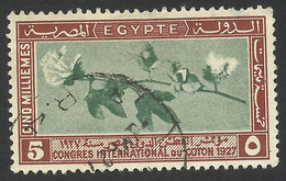 Egypt, 5 M. 1927, Sc # 125, Used. - Oblitérés