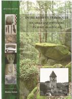 Entre Reins Et Trambouze - Six Mille Ans D'histoire En Haut-Beaujolais (Thizy, Amplepuis, Cours). Bastien DUBUIS - Rhône-Alpes